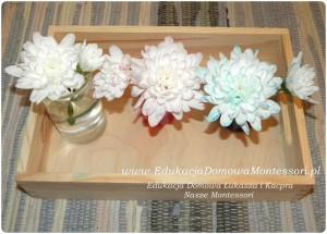 kwiaty-farba-2
